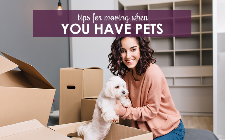Moving With Pets? Tips to Make the Transition a Smooth One
