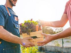 6 Ways to Celebrate National Lawn & Garden Month
