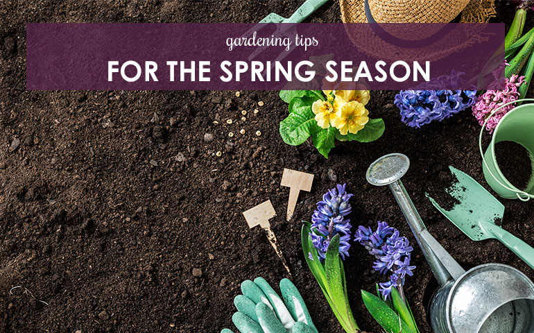 Gardening Tips for the Spring Season