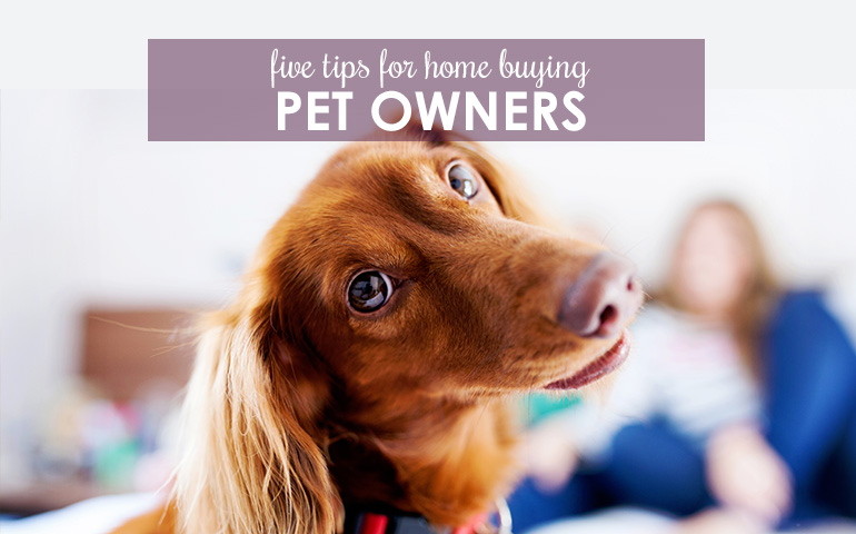 Five Pointers for Buying a Home with Pets