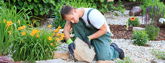 Lawn Tips in Time for National Lawn and Garden Month