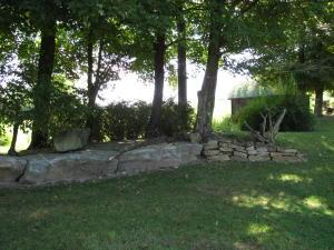 423 Forest Dr  Photo 20