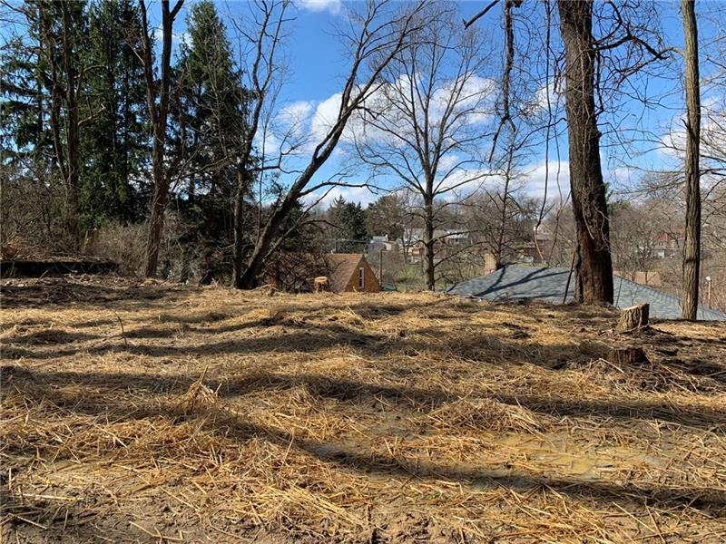 5755 Library Rd  Photo 19