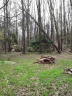 2526 Pine Hollow Rd.  Photo 4