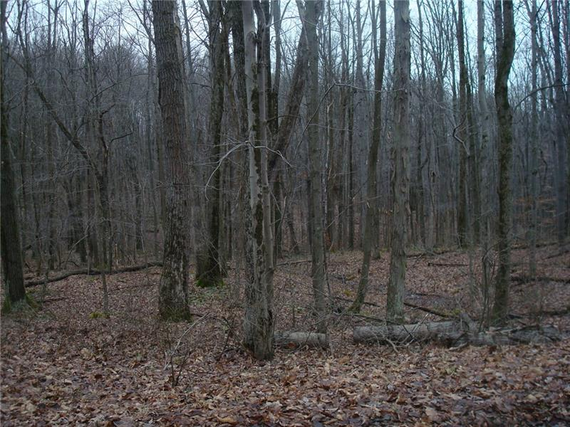 Lot 15 Mt Laurel Lane, Wharton Twp.