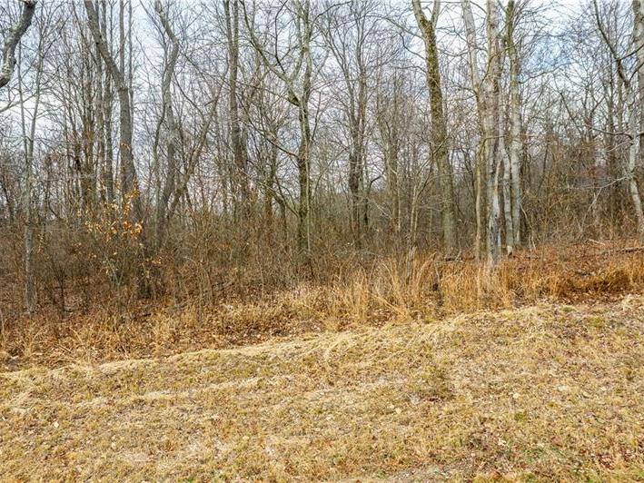 Lot 3 White Cloud & Williams, Allegheny Twp