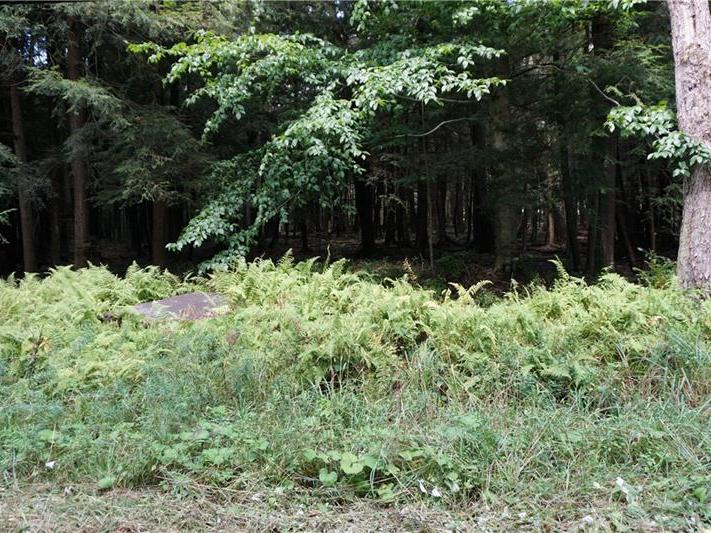 Lot 12 East Fairway Rd., Indian Lake Boro
