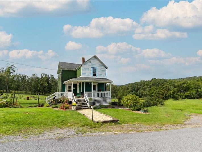 137 Old Mountain Road, Allegheny Twp